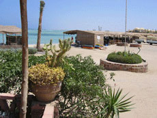 The Eco-village at Marsa Shagra!